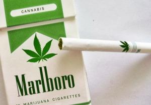 cigarros-de-marihuana