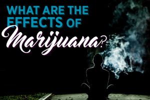 What are the Effects of Marijuana?