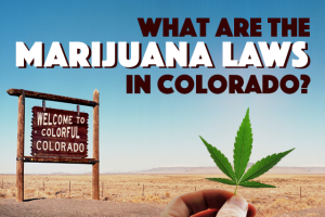 Marijuana Laws in Colorado