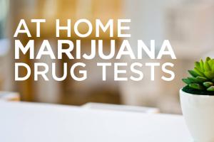 At Home Marijuana Drug Tests