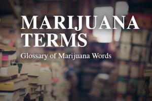 Marijuana Terms