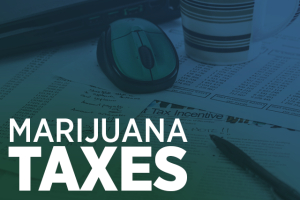 Marijuana Tax Revenue
