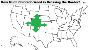 colorado weed crossing the border