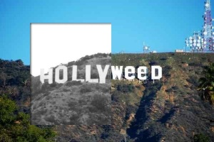 hollyWEED sign prank history feature