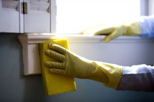 most useful marijuana strains for housecleaning