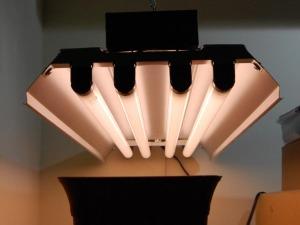 Fluorescent-grow-lights