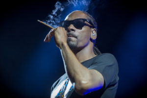 Snoop Dogg Stoner