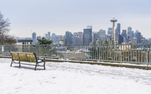 Seattle Winterscape Snowy
