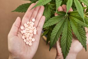 THC Pills Top brands Marijuana