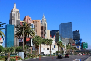 Top 5 Strains in Las Vegas, Nevada