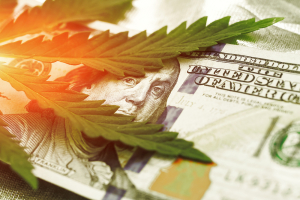 Money Marijuana Prices of Weed