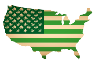 Weed in America State by State Purchase Limits