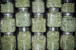 Jars of Marijuana Stacked