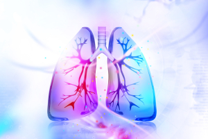 Colorful Vector Lungs