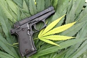 Handgun on Cannabis Leaves