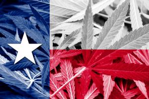 Texas Flag with Marijuana