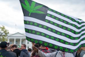 us cannabis flag capitol_Rena Schild